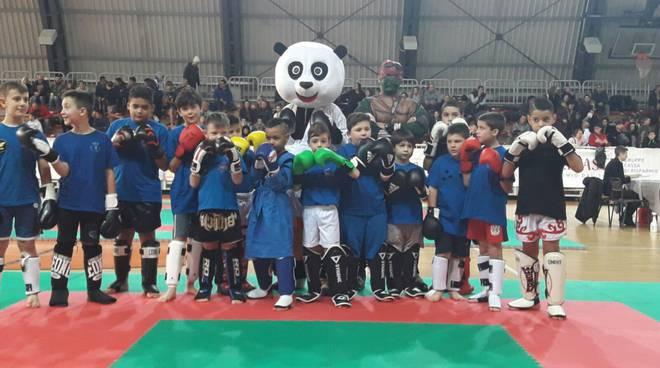 trofeo ninja turtle
